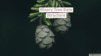 Binary Tree Data Structure