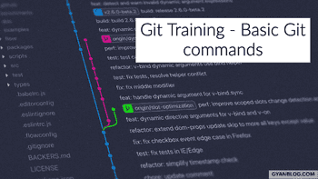 A Practical Guide on how to work with Git Basic Commands and workflows